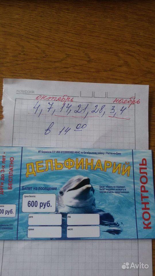 Билет в Дельфинарий г. Грозном. Чеченская Республика,  Грозный