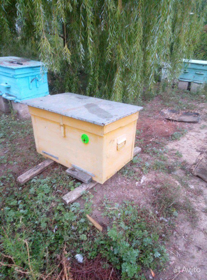 Пчелы с ульями. 2шт