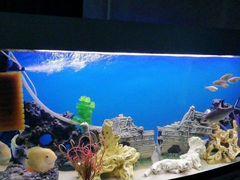 Песок и Коряга для аквариума