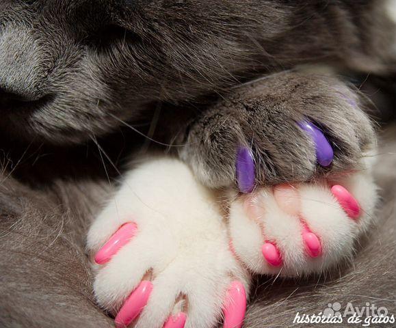 Силиконовые ногти для котов