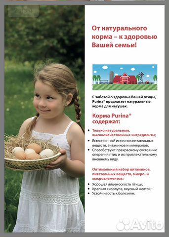 Комбикорм для несушек, яичных птиц Purina - 40 кг 89600500561 купить 2