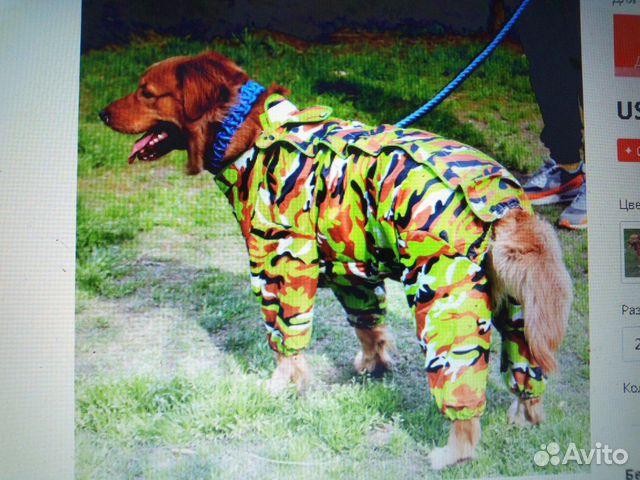Дождевик для собак 89515899554 купить 2