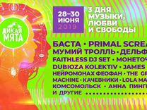 Билет на фестиваль Дикая Мята