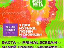 Музыкальный фестиваль дикая мята